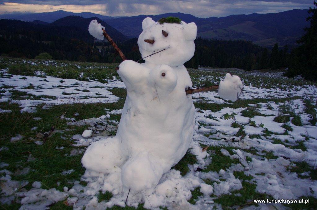 Bałwan ze śniegu