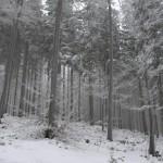 Beskid-Slaski-zima