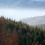 Smog-nad-Wisla