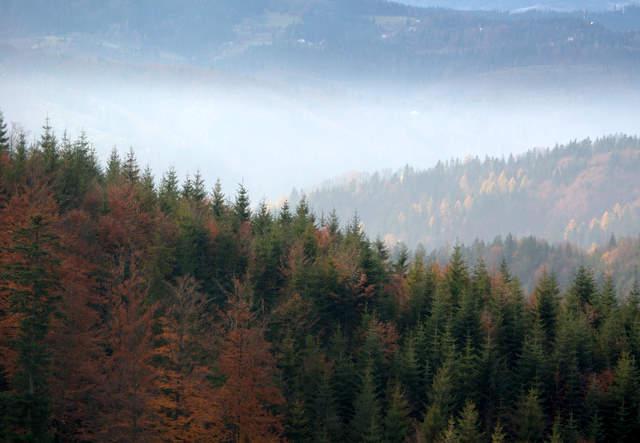 Smog nad Wisłą