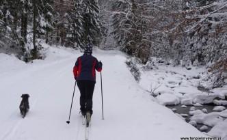 Trasa-biegowa-Dolina-Czarnej-Wiselki