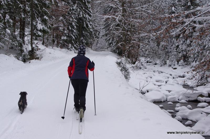 Dolina Czarnej Wisełki trasa na narty biegowe