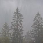 beskidy-we-mgle