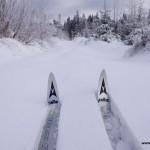 dziewiczy-snieg