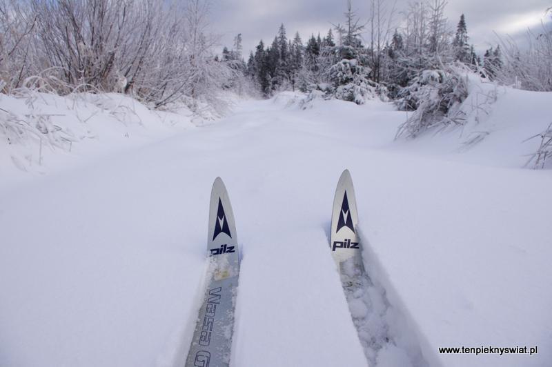 dziewiczy śnieg