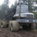 maszyna-do-niszczenia-lasu