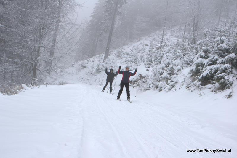 narciarki, narty biegowe