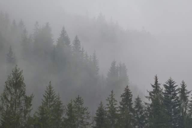 Beskidy w mgle
