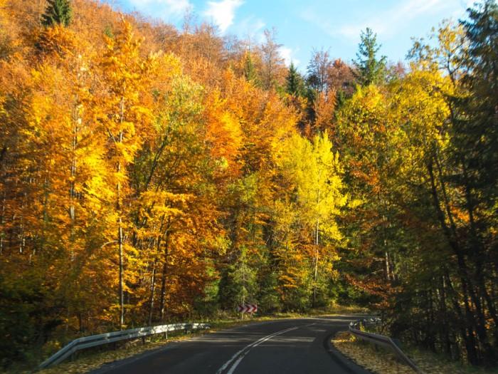 Bajecznie kolorowa droga z Salmopolu do Wisły Malinką jesienią