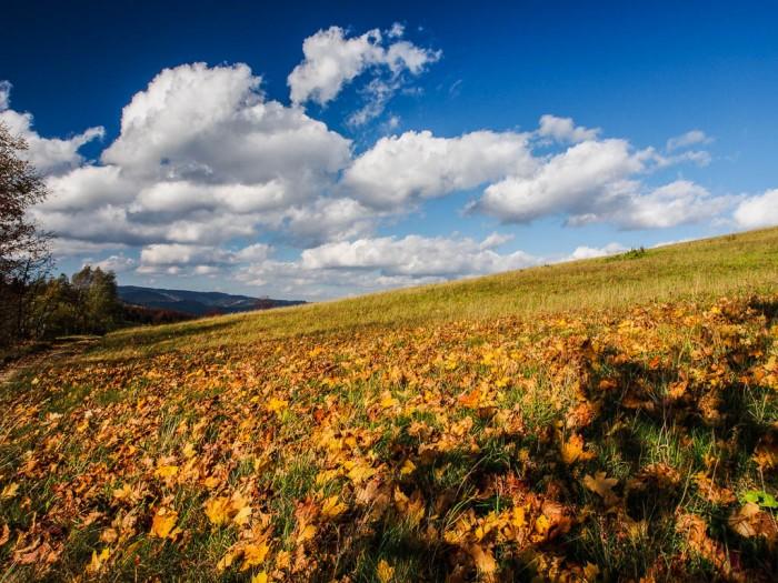 krajobraz jesienią w górach