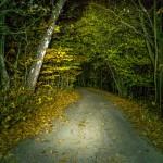 Wisła Malinka nocny spacer Doliną Fiodorówki