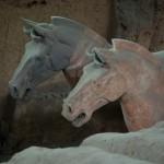 armia-terakotowa-konie