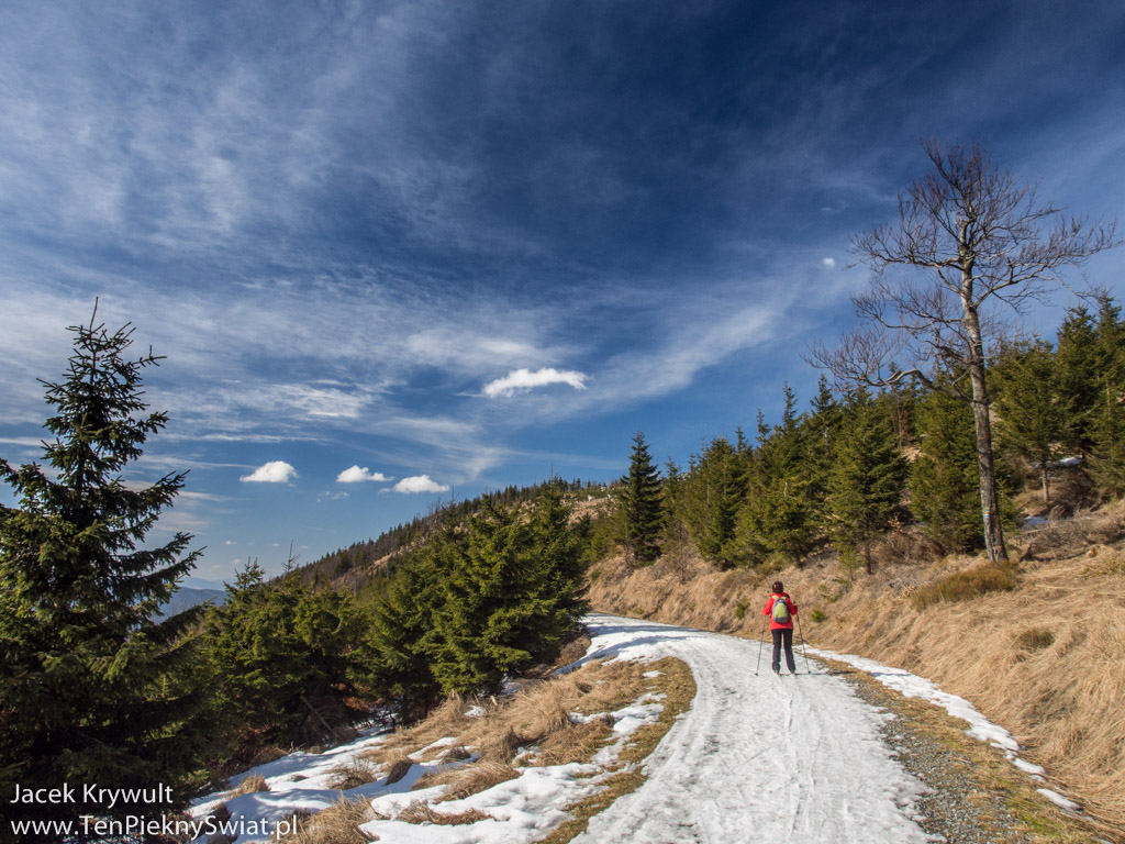 Jesioniki, Pradziad i narty biegowe