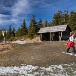 narciarz biegowy Koziniec