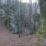Dolina-Mnikowska-buczyna-naskalna