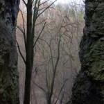 Dolina-Mnikowska-skaly