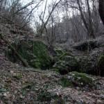 Rezerwat-Zimny-Dol-koryto-strumienia