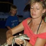 maly-krokodyl
