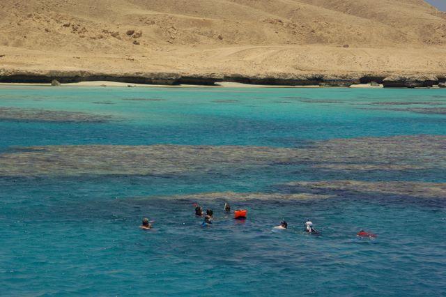 Morze Czerwone, nurkowanie
