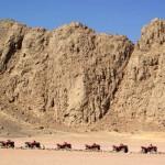 safari-po-pustyni-quady