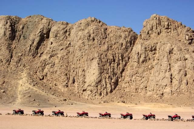quady na pustyni