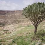 Wycieczka-do-klasztoru-Debre-Damo-Etiopia