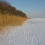 na-nartach-po-jeziorze