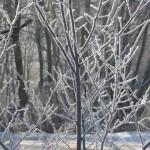 zima-w-Plawniowicach
