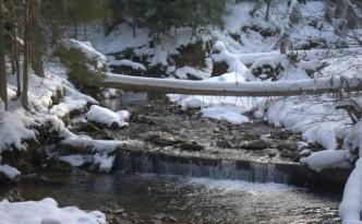 Dolina-Kamienicy-rzeka