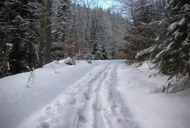 szlak dolina kamienicy