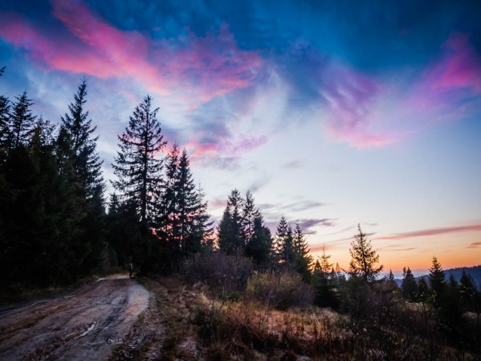 Ostatnie promienie słońca na szlaku w Gorcach
