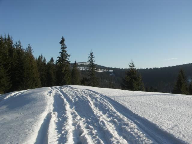 Szlak na Turbacz, Gorce