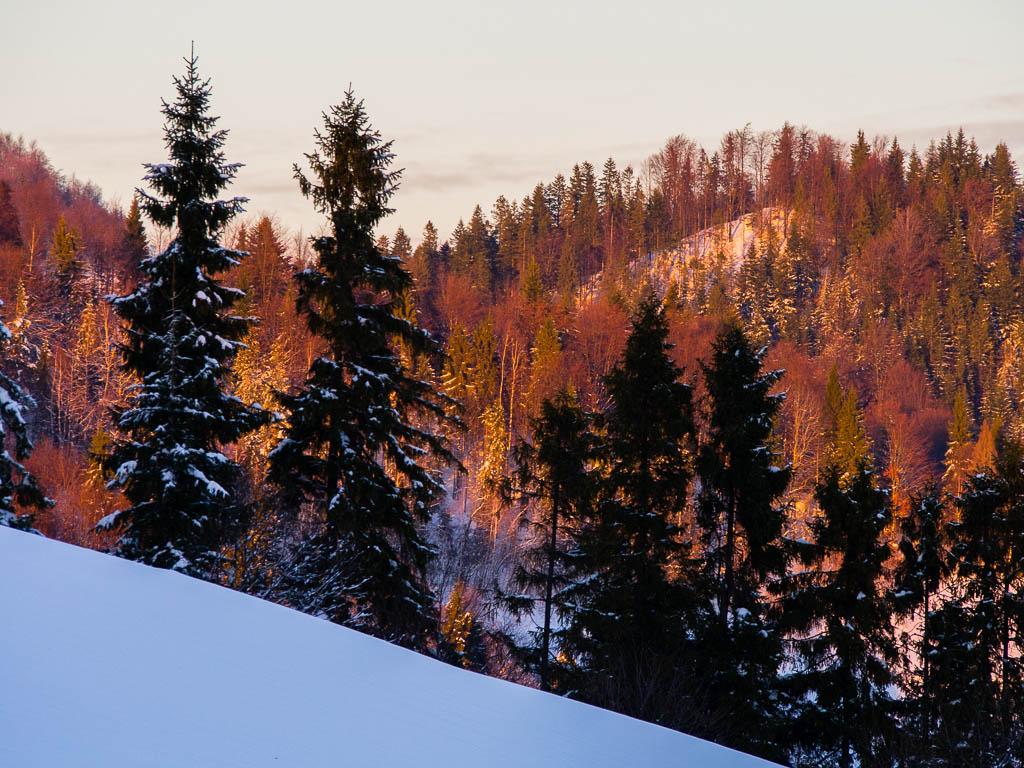 A w Gorcach zima lubi dłużej trzymać