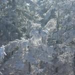zima-w-gorach-bystrzyckich