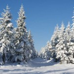 jakuszyce-snieg