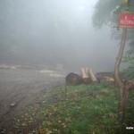 Rezerwat-przyrody