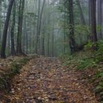 gory-opawskie-szlak
