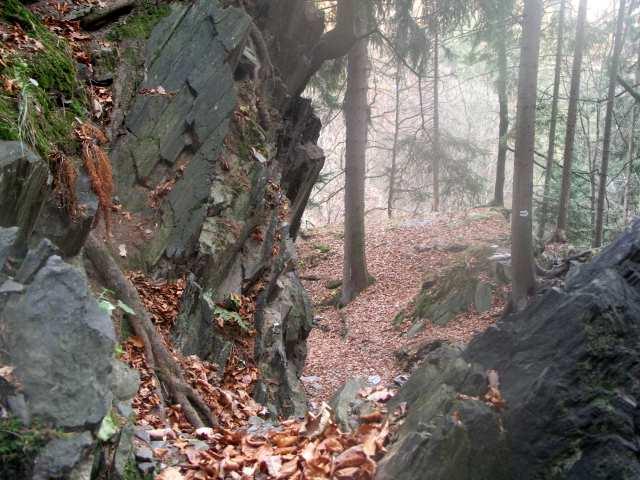 Szlak w Górach Opawskich