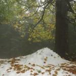 zima-i-jesien-w-gorach-sowich