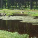gory-stolowe-jeziorko