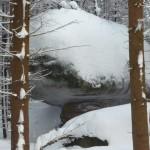 skalny-grzyb-zima