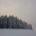 trasy-biegowe-pasterka-zima