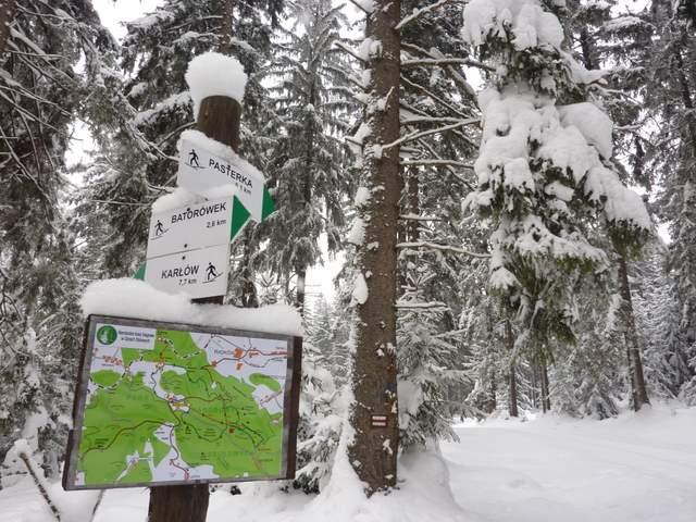 Trasy biegowe Góry Stołowe