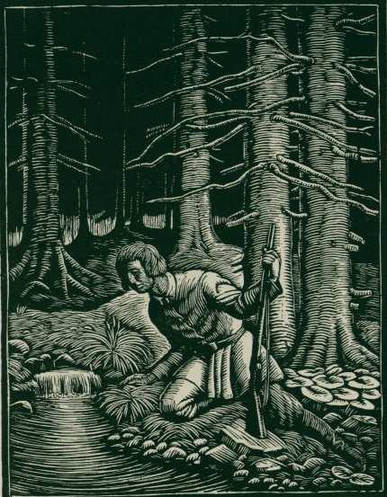 Puszcza Jodlowa ilustracja drzeworyt