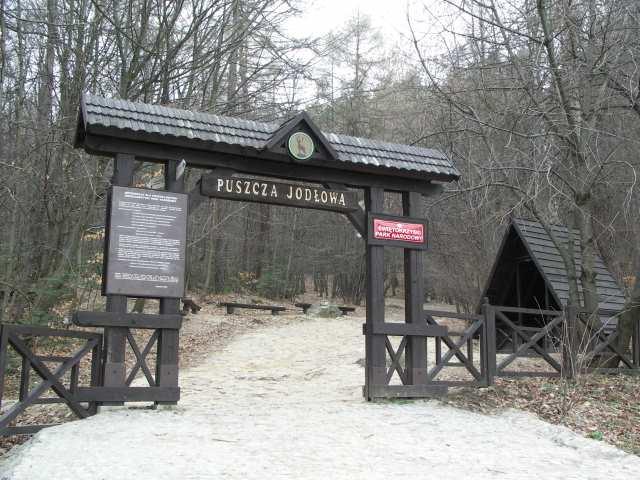 Puszcza Jodłowa - brama wejściowa do Świętokrzyskiego Parku Narodowego