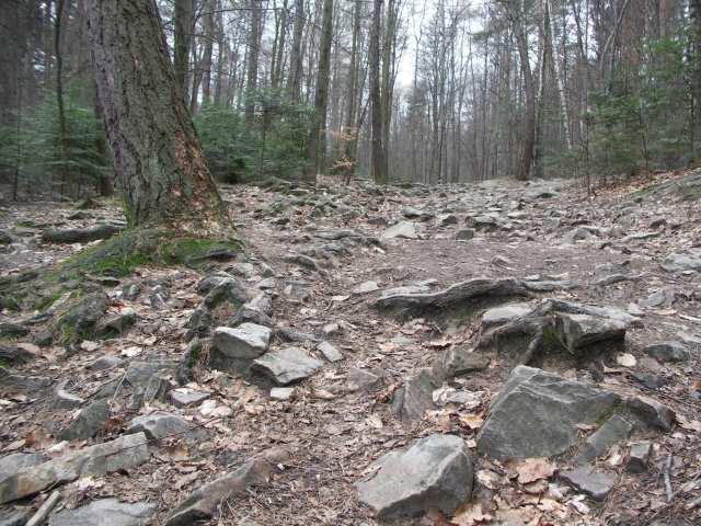 Szlak na Święty Krzyż, Świętokrzyski Park Narodowy