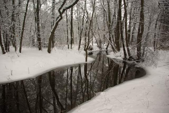 Biała Przemsza, Pustynia Błędowska zimą