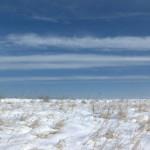 pole-w-sniegu