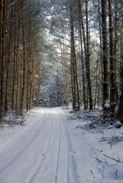 czerwony szlak z Bobolic do Mirowa