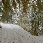 Dolina-Mumlavy-droga